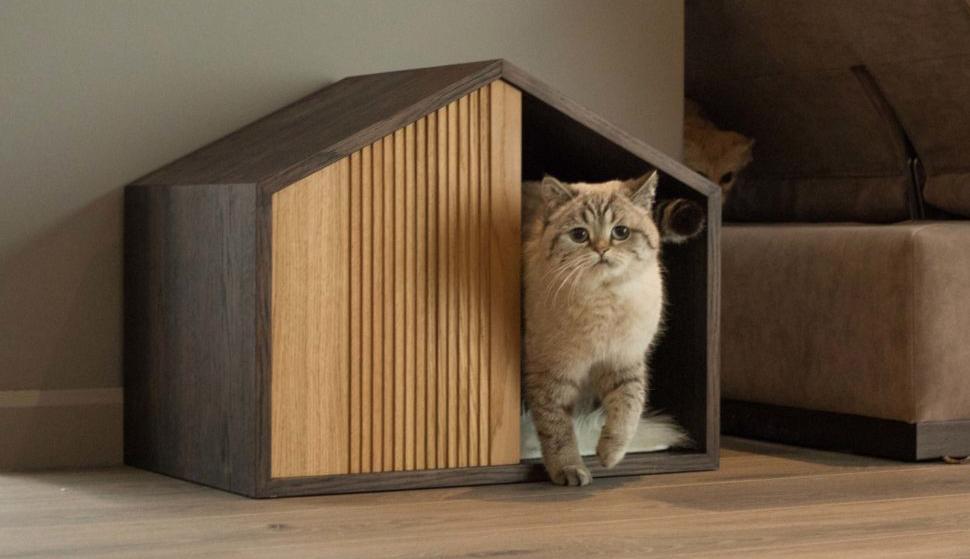 17 идей как сделать домик для кошек своими руками