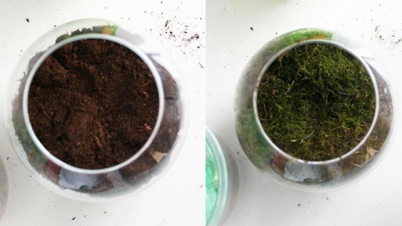 слой почвы для растений