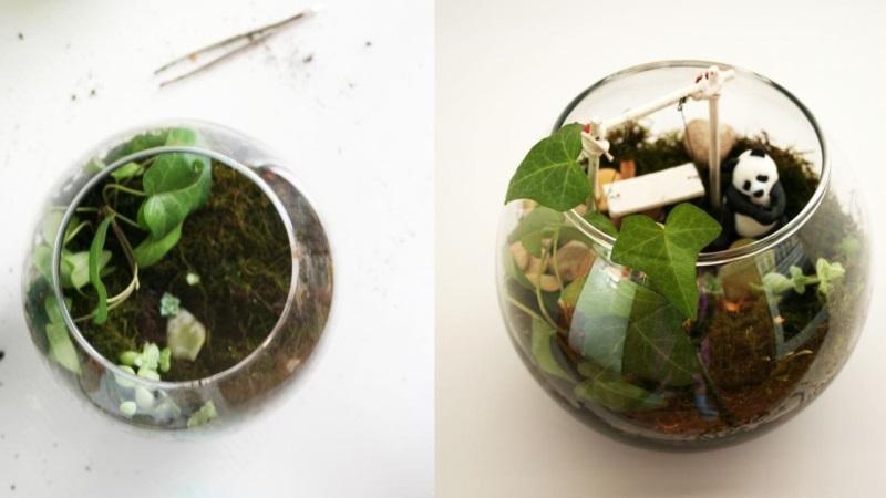 высадка растений и декор