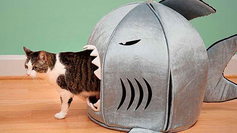 фотография домика для кошки из поролона