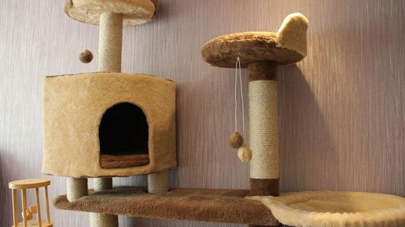 фото игрового комплекса для кошки