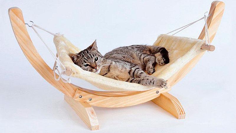оригинальная лежанка для кота