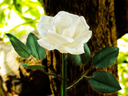 как можно сделать из бумаги розу