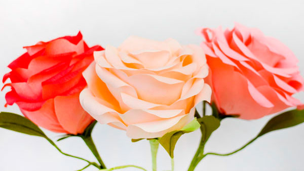 роза из креповой бумаги другим способом